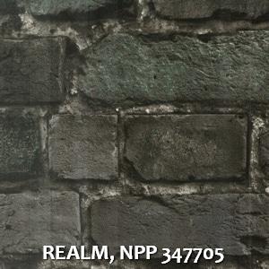 REALM, NPP 347705
