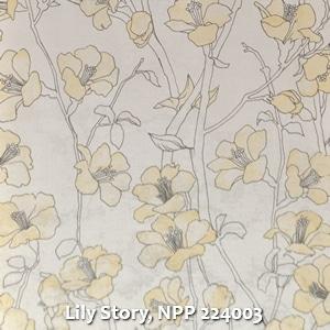Lily Story, NPP 224003