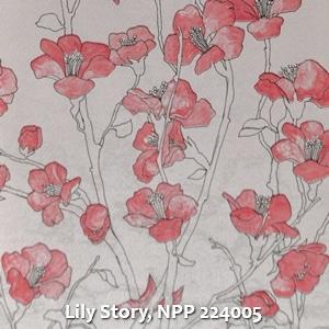 Lily Story, NPP 224005