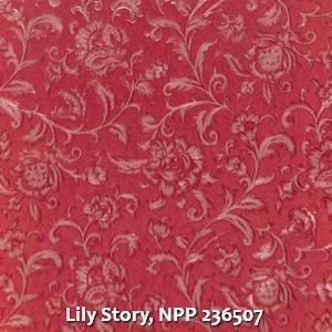 Lily Story, NPP 236507